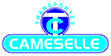 transportes-cameselle_logook